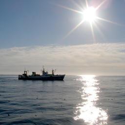 Рыбопромысловое судно на Дальнем Востоке