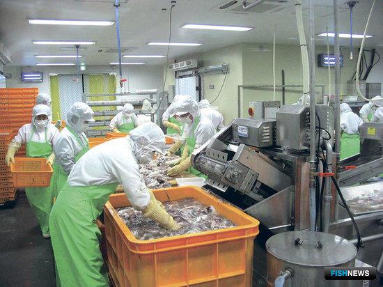 Современное состояние морского хозяйства Республики Корея