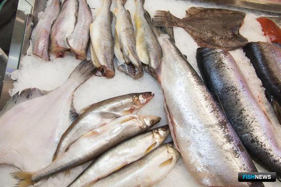 Рыбная продукция на выставке «Продэкспо»