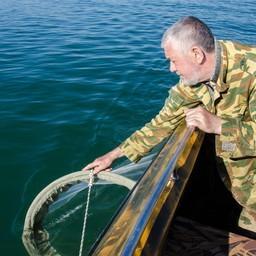 Специалисты Азовского НИИ рыбного хозяйства отслеживают, как строительство моста в Крым влияет на ихтиофауну. Фото пресс-службы института
