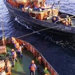 Взятие аварийного судна на буксир. Фото пресс-службы Северного ЭО АСР