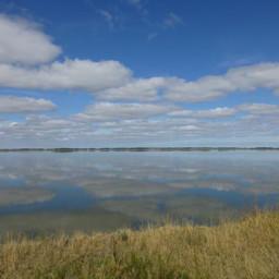 Озеро Горькое. Фото департамента природных ресурсов и охраны окружающей среды Новосибирской области