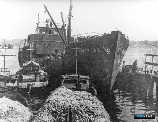 Доставка крабов на береговой комбинат