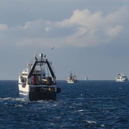 Промысел в Охотском море