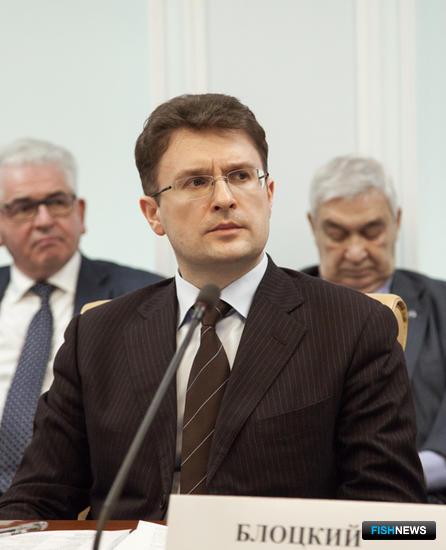 Член комитета ГД по природным ресурсам, собственности и земельным отношениям Владимир БЛОЦКИЙ