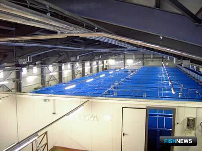 Самый современный рыборазводный завод на сегодняшний день -Вилюйский ЛРЗ (Камчатская область)