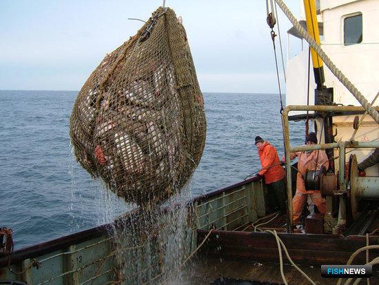 Правительственная комиссия наметила курс по «прибрежке»