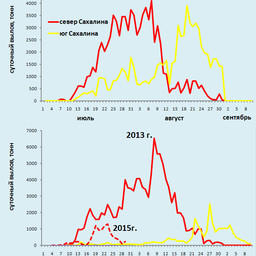 Посуточная динамика вылова горбуши поколений нечетных лет у восточного побережья Сахалина («север» - Макаровский район и севернее, «юг» - Долинский район и южнее). Рисунок пресс-службы СахНИРО