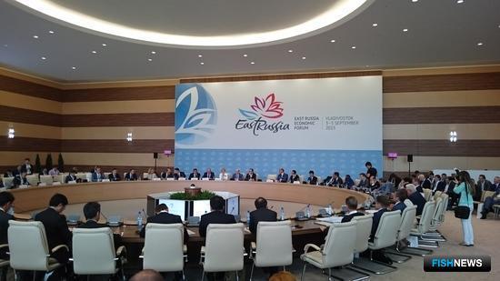 Первый ВЭФ проходил на острове Русский с 3 по 5 сентября 2015 г.