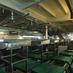 За сутки судно способно перерабатывать 650 тонн сырца
