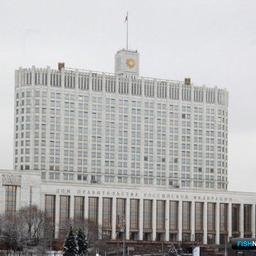 Назначение заместителей главы Росрыболовства хотят вернуть Правительству