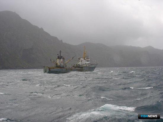 «Прибрежникам» рекомендуют привести договоры в соответствие с законом