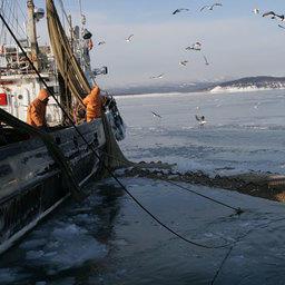 Эксперты не прониклись реформой «прибрежки»