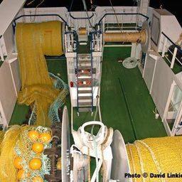 З) Кормовой траулер-морозильщик 31,7 х 10,4 м и обьемом трюма 343 куб.м (190 тонн мороженных блоков). Судно укомплектовано оборудованием для сортировки, мойки, разделки и взвешивания рыбы и ее заморозки обьемом 32 тонны/сутки.