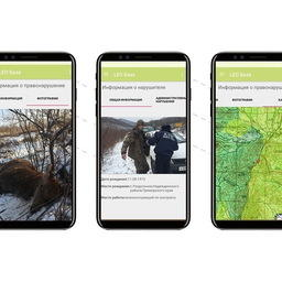 Работа мобильного приложения. Фото пресс-службы ФГБУ «Земля леопарда»