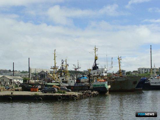 Сахалинская область определилась с поддержкой рыбной отрасли