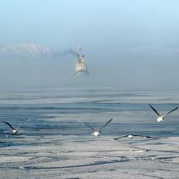Льды на промысле у берегов Сахалина