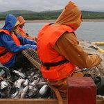 «Рыбный союз» рыбакам не союзник