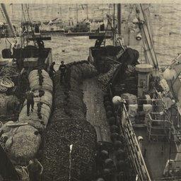 Страницы истории. «Дальрыба» в судьбах рыбаков