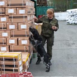 Проверка товара служебной собакой на Первомайском посту Владивостокской таможни
