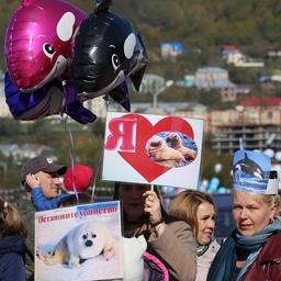 В Петропавловске-Камчатском прошел второй экологический фестиваль «Море жизни». Фото пресс-службы правительства Камчатки