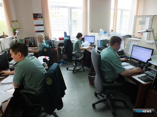 Сотрудники таможни работают с электронными декларациями