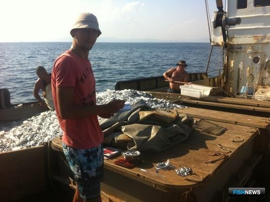 Специалисты Азовского НИИ рыбного хозяйства приняли участие в наблюдении за промыслом черноморского шпрота. Фото пресс-службы института