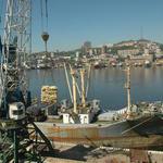 Правительство решило разобраться с ситуацией в портах
