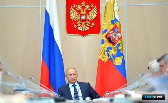 Владимир ПУТИН провел заседание президиума Госсовета по вопросам рыбной отрасли. Фото пресс-службы президента