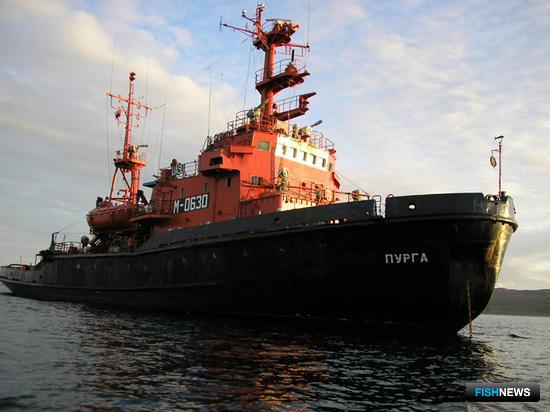Буксир «Пурга». Фото предоставлено Северным экспедиционным отрядом аварийно-спасательных работ Росрыболовства.