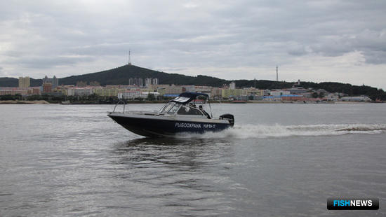 Рейды осуществлялись на рыбоохранных судах, быстроходных катерах и автотранспорте. Фото пресс-службы Амурского теруправления Росрыболовства