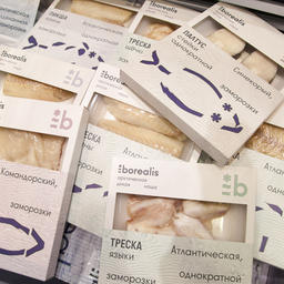 Группа «Норебо» привезла на выставку премиальную торговую марку Borealis