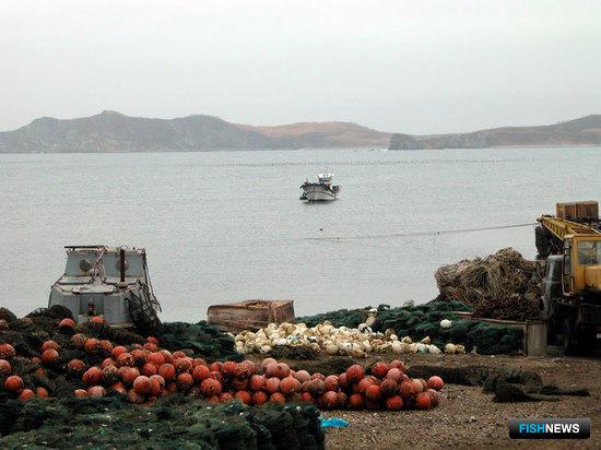 Вопросы аквакультуры и «прибрежки» попробуют решить одним законом