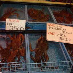 Рыбные уроки префектуры Тоттори