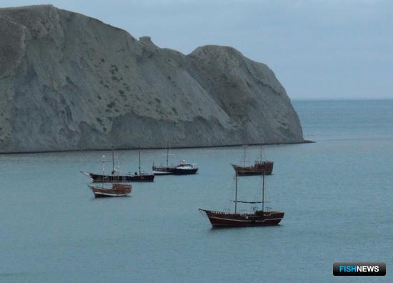 В Крыму прибавилось рыбаков