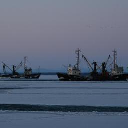 Суда ведут промысел у берегов Сахалина