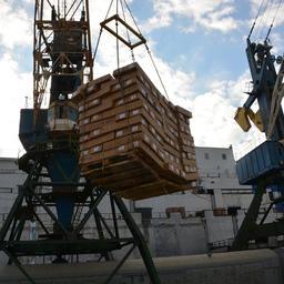 Приемка и перегрузка рыбопродукции во Владивостоке. Фото пресс-службы ОАО «Океанрыбфлот»
