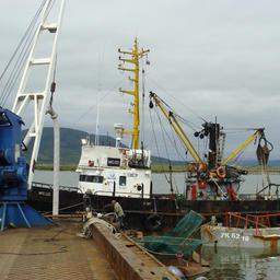 Убрать избыточные барьеры по учету улова Камчатка предлагает для всего Дальнего Востока