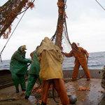 Недостаток квалифицированных кадров и «текучка» остаются «головной болью» для российского рыбохозяйственного комплекса.