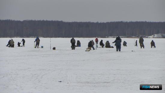 На берег Волги съехалось более 280 человек