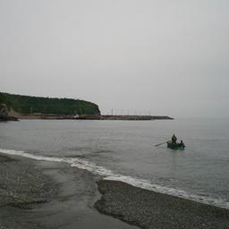 Совокупный улов в рыбный год в среднем составляет около 1,7 тыс. тонн