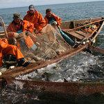Налоговые льготы для рыбаков грозят отменить