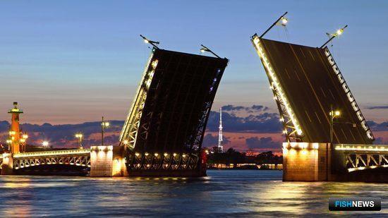 Санкт-Петербург. Фото из открытых источников