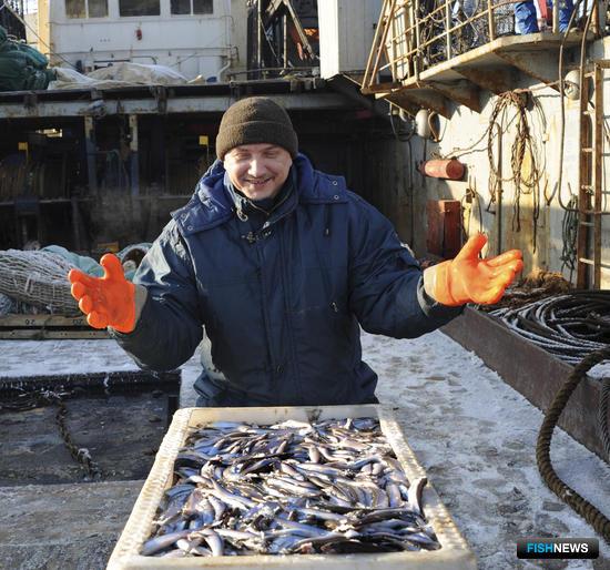Рыбак с мойвой в Мурманске