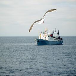Минэкономразвития готово поддерживать российских рыбаков
