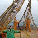 Приморские рыбаки
