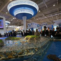 Экспозиционные залы были оформлены аквариумами с объектами марикультуры