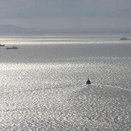 Налоги «покидают» Камчатку вместе с рыбопромышленными компаниями