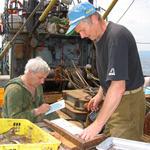 Правительству поручили разобраться с проблемами рыбохозяйственной науки