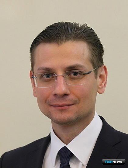 Директор департамента судостроения и морской техники Минпромторга Максим КОЧЕТКОВ. Фото сайта PortNews